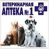 Ветеринарные аптеки в Питкяранте